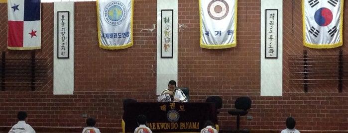 Academia Panameña de Taekwondo is one of สถานที่ที่ Polina ถูกใจ.