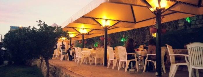 Beit Al Samak is one of สถานที่ที่ burcu ถูกใจ.