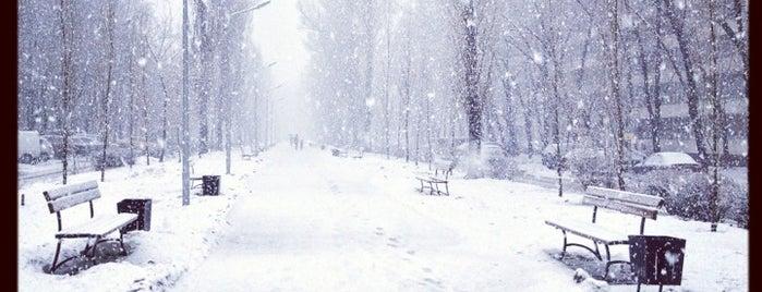Алея на бульварі Ігоря Шамо is one of Orte, die Валентина gefallen.