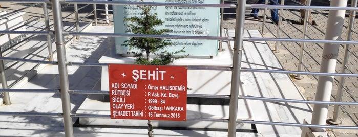 Şehit Ömer Halisdemir Şehitliği is one of Mustafaさんのお気に入りスポット.