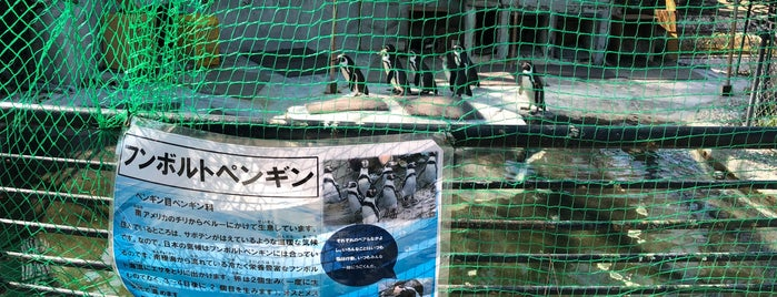 Komoro City Zoo is one of Masahiro 님이 좋아한 장소.