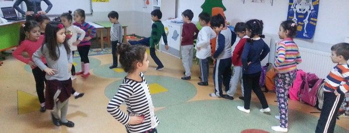 Üçkuyular Kocatürk Koleji Okul Öncesi Eğitim Kampüsü is one of gidilmeli!.