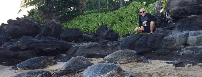 Mahina Surf is one of Lugares favoritos de Sophie.