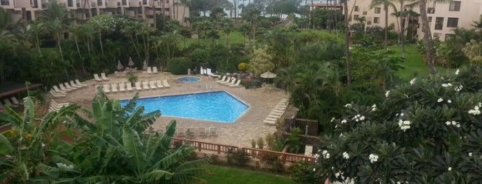 Kamaole Sands Resort is one of Lieux qui ont plu à Janice.