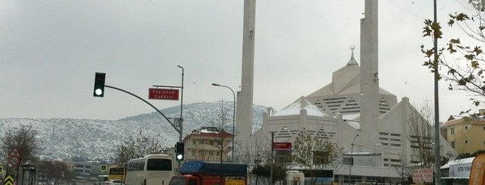 Medine Mescidi Camii is one of สถานที่ที่ Mevlüt🎬〽⌚🌇🚘💯✔ ถูกใจ.