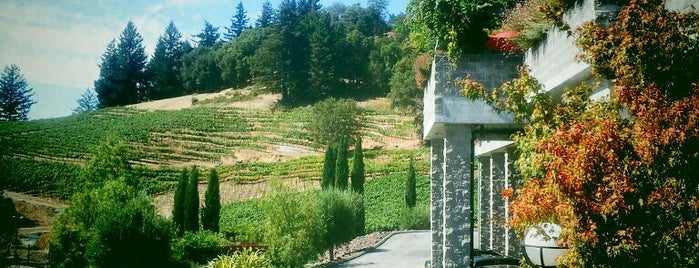 David Bruce Winery is one of Lieux sauvegardés par Darcy.
