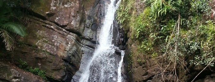 El Yunque National Forest is one of National Recreation Areas.