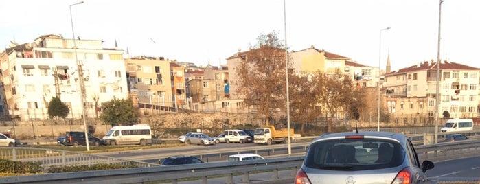 Bakırköy 31. Noterliği is one of Locais salvos de Birgül.