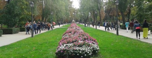 Parque del Retiro is one of Madrid by Locals.