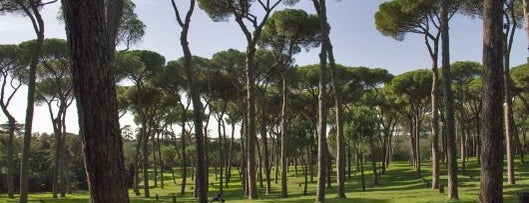 Villa Doria Pamphilj is one of Rome by Locals.
