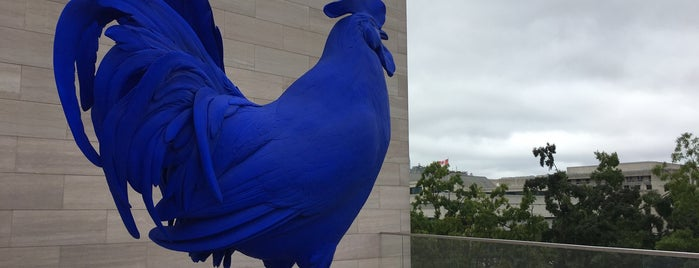 Blue Chicken is one of DC Monuments.