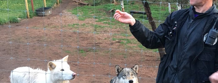 Colorado Wolf and Wildlife Center is one of Denver.