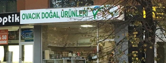 Ovacık Doğal Ürünleri is one of Yeni ev.