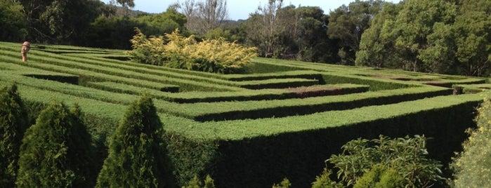 The Enchanted Maze Garden is one of Sandra'nın Kaydettiği Mekanlar.