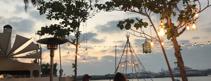 Fish Beach Taverna is one of Dubai new to try.