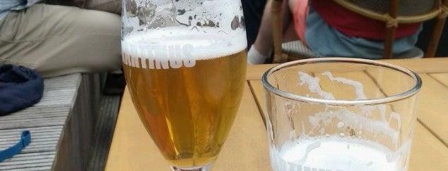 Brouwerij Martinus is one of Dutch Craft Beer Breweries.