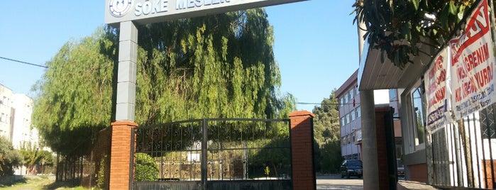 Söke Meslek Yüksekokulu is one of Lugares favoritos de Melike.