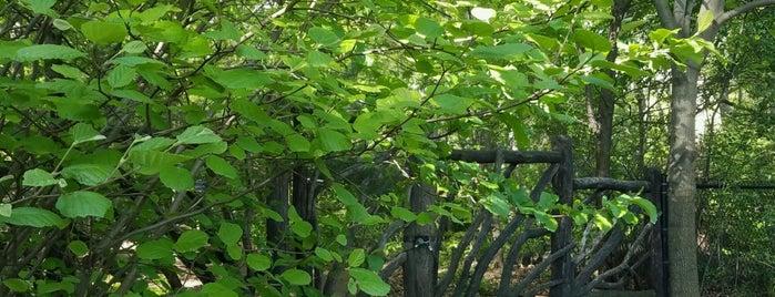 Hallett Nature Sanctuary is one of NY'ın En İyileri 🗽.