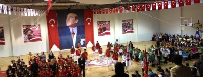 Mev Koleji Özel Ankara İlk ve Ortaokulu is one of Lieux qui ont plu à Nergis.