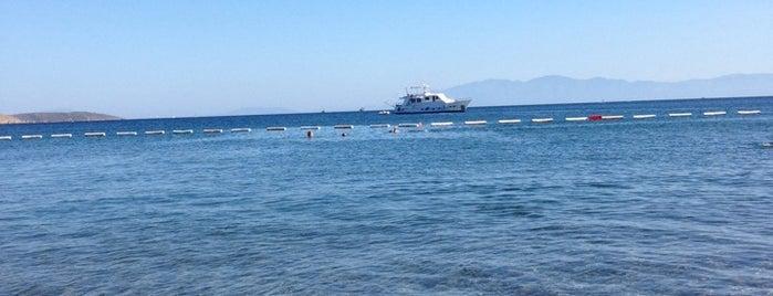 Çapa Beach is one of Plaj.