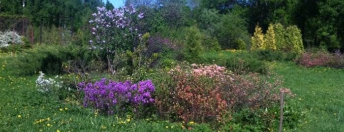 Ботанический сад is one of Культура.