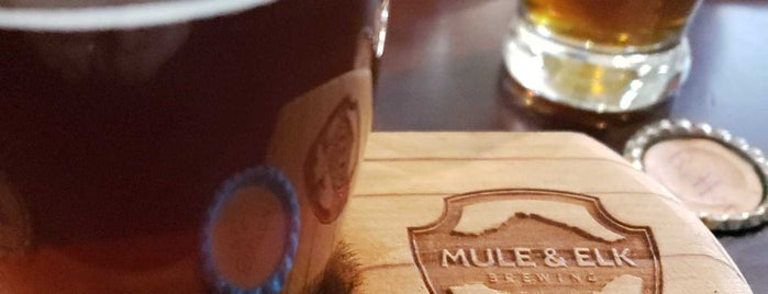 Mule & Elk Brewing Co. is one of สถานที่ที่ Andrew ถูกใจ.
