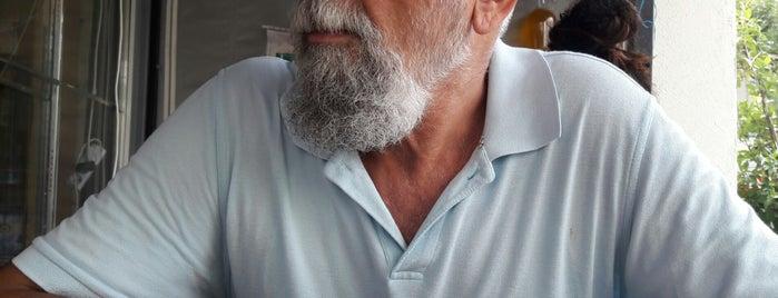 Seyidoğlu is one of Posti che sono piaciuti a Y.Emre.