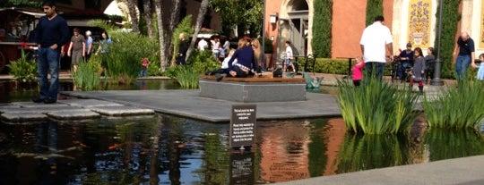 Koi Pond, Fashion Island is one of Lugares favoritos de Ryan.