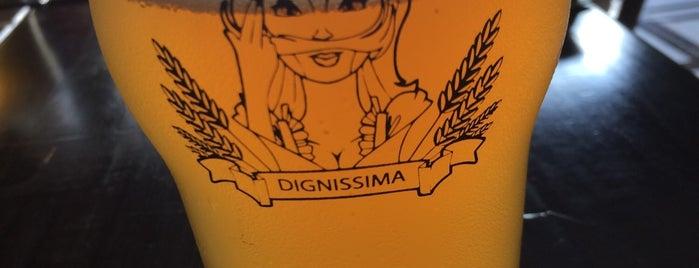 Digníssima Beer is one of Cervejas do Careca.