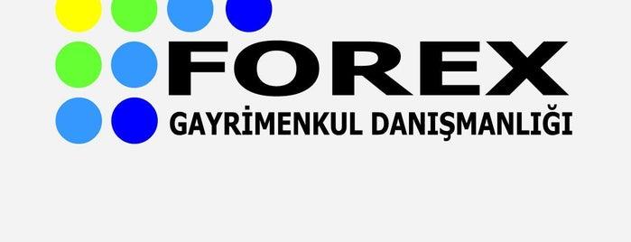 EMLAK FOREX is one of Locais curtidos por Kemal ÇATKIN.