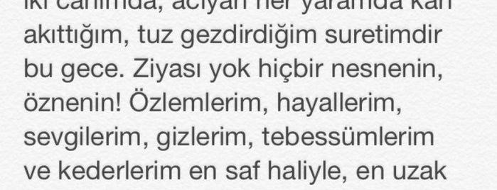 ıssız tepe is one of Kalemimden....
