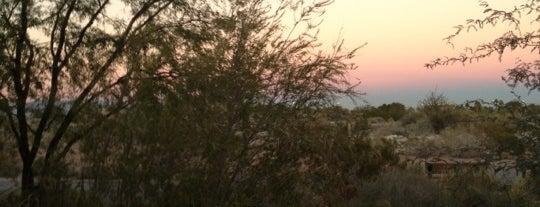 Springs Preserve is one of Vegas.