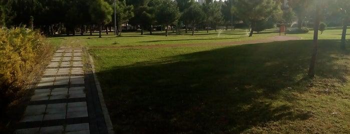 Mimoza Spor Parkı is one of Lieux qui ont plu à Ali Can.