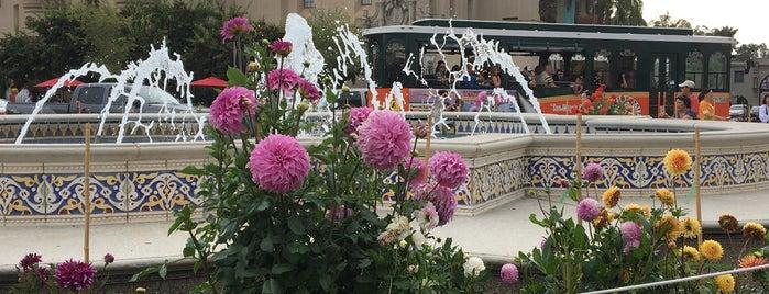 Balboa Park is one of Locais curtidos por Duyen.