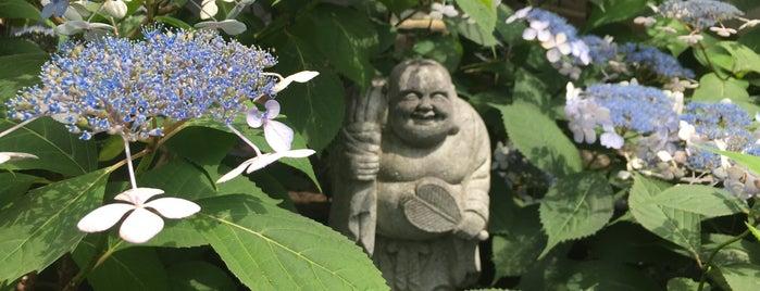 建仁寺 霊源院 is one of Japan.