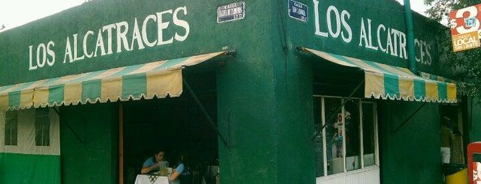 Los Alcatraces is one of Lugares guardados de Betsy.