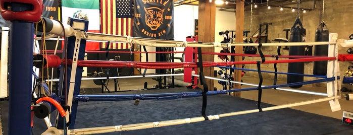 Seattle Boxing Gym is one of Ahmad : понравившиеся места.