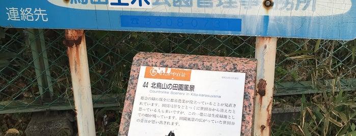 区立 北烏山ほととぎす公園 is one of せたがや百景 100 famous views of Setagaya.