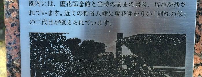 芦花公園と粕谷八幡一帯 is one of せたがや百景 100 famous views of Setagaya.