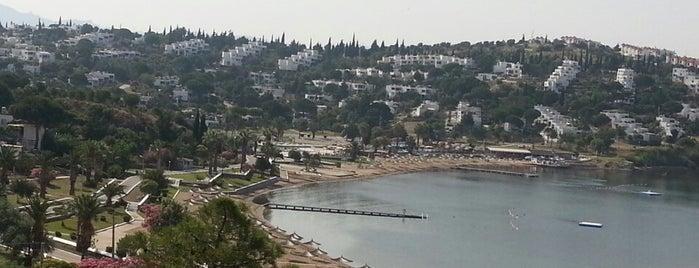 Güvercin Koyu is one of สถานที่ที่ Özge ถูกใจ.