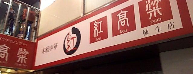 紅高梁 柿生店 is one of 麻生区多摩区の ラーメン。.