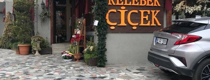 Kelebek Çiçekçilik is one of Orte, die ceren gefallen.