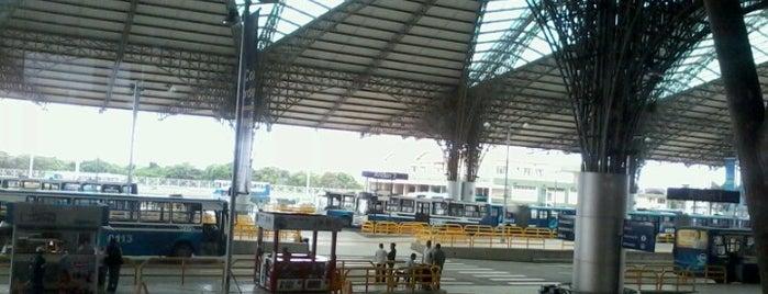 Terminal Río Daule - Metrovía is one of สถานที่ที่ Pamela ถูกใจ.