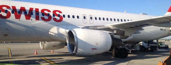 Aéroport de Genève Cointrin (GVA) is one of สนามบินนานาชาติ (1).