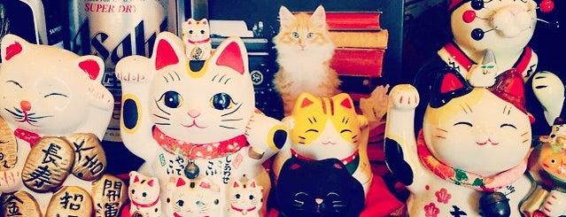 Sushi cat is one of Lugares favoritos de Katie.