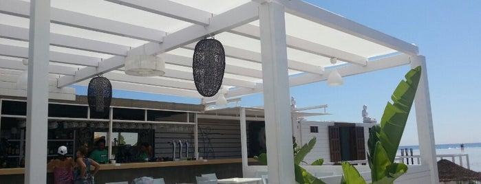 Le Club 7 (Beach Club & Restaurant) is one of Tarifa.