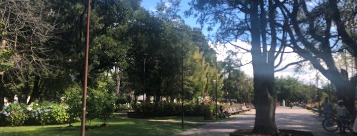 Plaza de Armas de Pucón is one of Xavi 님이 좋아한 장소.