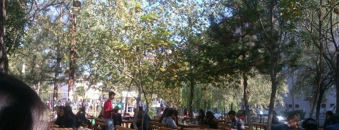 Zübeyde Hanım Parkı is one of Orte, die gursel gefallen.