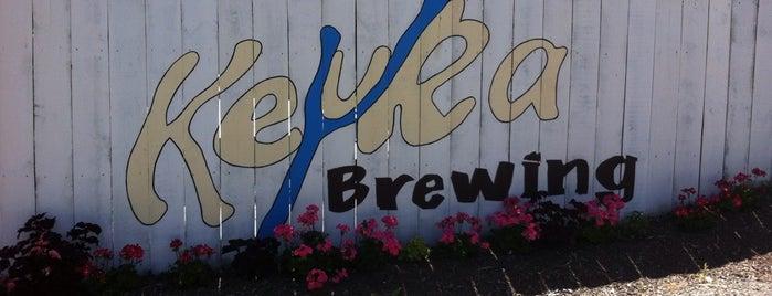Keuka Brewing Company is one of Naples, NY.