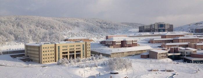 Düzce Üniversitesi Araştırma ve Uygulama Hastanesi is one of CWOmerB.